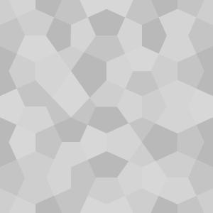 congruent_pentagon 3