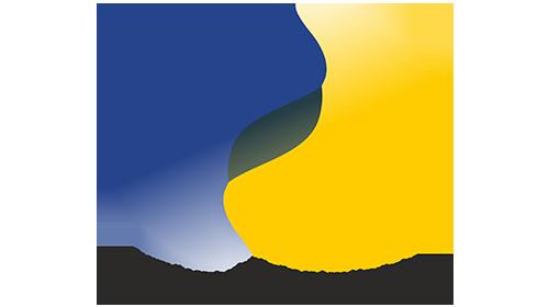 profi vnfil logo